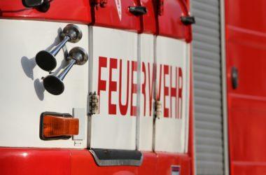 , ZEW-Konjunkturerwartungen gehen leicht zurück, City-News.de