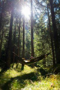 """Waldbaden, Der Alpbacherhof, reisen, oesterreich, Kraftquelle Natur: Waldbaden im """"Natur und SPA Resort Der Alpbacherhof****s"""", City-News.de, City-News.de"""
