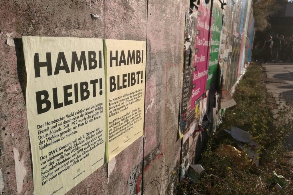 , RWE-Chef rechnet mit Erhalt des Hambacher Forsts, City-News.de