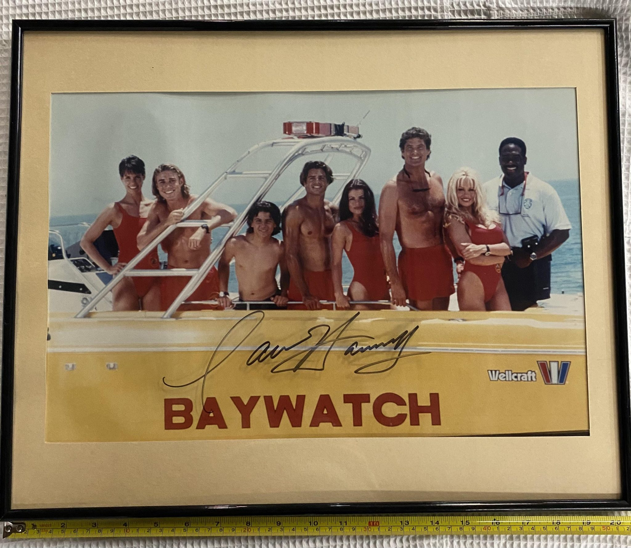 BikiniARTmuseum, David Hasselhoff`s K.I.T.T. für 300.000 $ in USA versteigert, City-News.de
