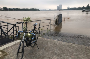 Hochwasser in Bonn Foto: Wolfgang Möhring
